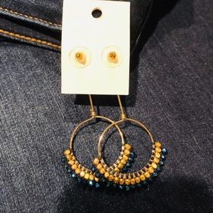 Stunning Gold and Blue Earrings